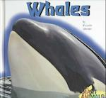 Whales (Giant Animals)