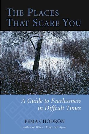 Places That Scare You af Pema Chodron