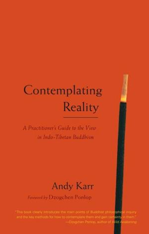 Contemplating Reality af Andy Karr