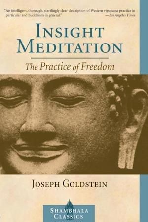 Insight Meditation af Joseph Goldstein
