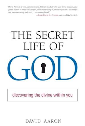 Secret Life of God af Rabbi David Aaron
