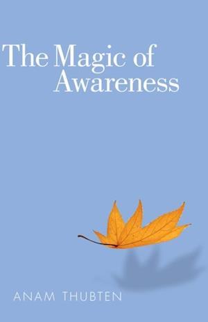 Magic of Awareness af Anam Thubten