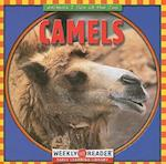 Camels (Animals I See at the Zoo)