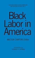 Black Labour in America af Milton Cantor