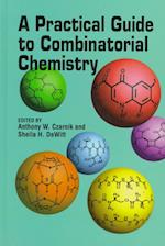 Practical Guide to Combinatorial Chemistry (ACS Professional Reference Books)