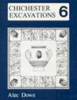 Chichester Excavations Volume 6