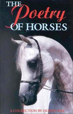 The Poetry of Horses
