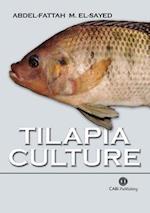 Tilapia C