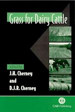 Grass for Dairy C