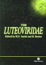 The Luteoviridae
