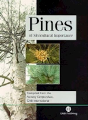 Pines of Silvicultural Importance
