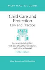 Child Care and Protection (Wildy Practice Guide)