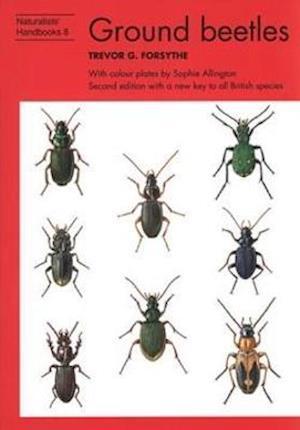 Bog, hardback Ground Beetles af Trevor G. Forsythe