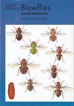 Blowflies (Naturalists' Handbook, nr. 23)