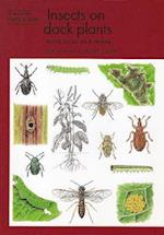 Insects on dock plants (Naturalists' Handbook, nr. 26)
