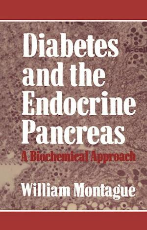 Diabetes and the Endocrine Pancreas: A Biochemical Approach