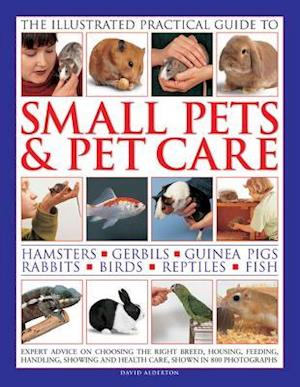 Illustrated Practical Guide to Small Pets & Pet Care