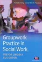 Groupwork Practice in Social Work (Transforming Social Work Practice)