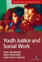 Youth Justice and Social Work (Transforming Social Work Practice)