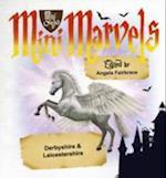 Mini Marvels Derbyshire & Leicestershire