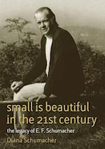 Small is Beautiful in the 21st Century (Schumacher Briefings)