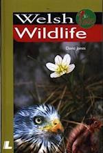 Welsh Wildlife (It's Wales)