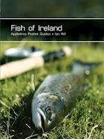 Fish of Ireland (Pocket Guides)