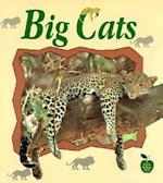 Big Cats (Crabapples S)
