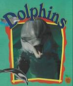 Dolphins (Crabapples S)