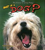 What is a Dog? (Science of Living Things S)