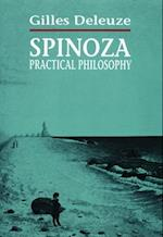 Spinoza, Practical Philosophy