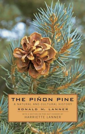 Pinon Pine af Ronald M. Lanner