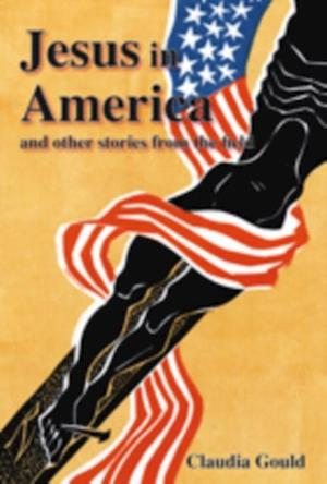 Jesus in America and Other Stories from the Field af Claudia Gould