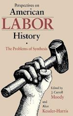 Perspectives on American Labour History