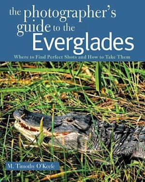 The Photographer's Guide to the Everglades