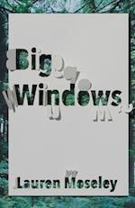Big Windows (CARNEGIE-MELLON POETRY)