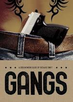 Gangs (Groundwork Guides)