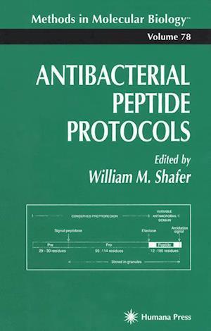 Antibacterial Peptide Protocols