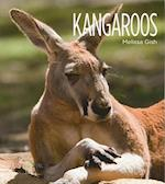 Kangaroos af Melissa Gish