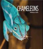 Chameleons (Living Wild)