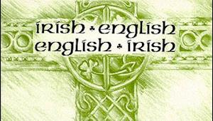 Irish-English, English-Irish Dictionary