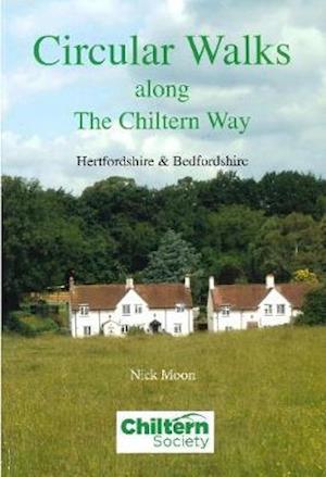 Circular Walks Along the Chiltern Way