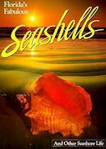 Florida's Fabulous Seashells