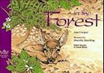 In the Forest (Wild Wonders, nr. 2)