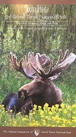 Wildlife of Grand Teton National Park