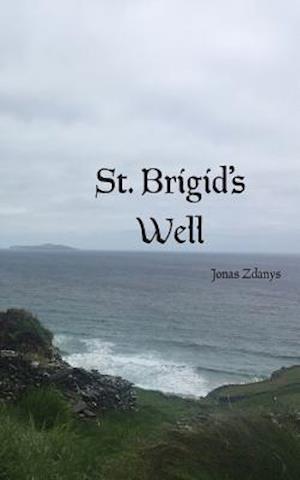 Bog, paperback St. Brigid's Well af Jonas Zdanys