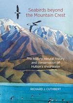 Seabirds Beyond the Mountain Crest