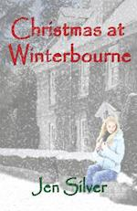 Christmas at Winterbourne