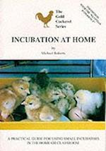 Incubation at Home (Gold Cockerel S)