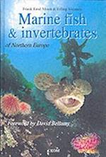 Marine Fish & Invertebrates of Northern Europe